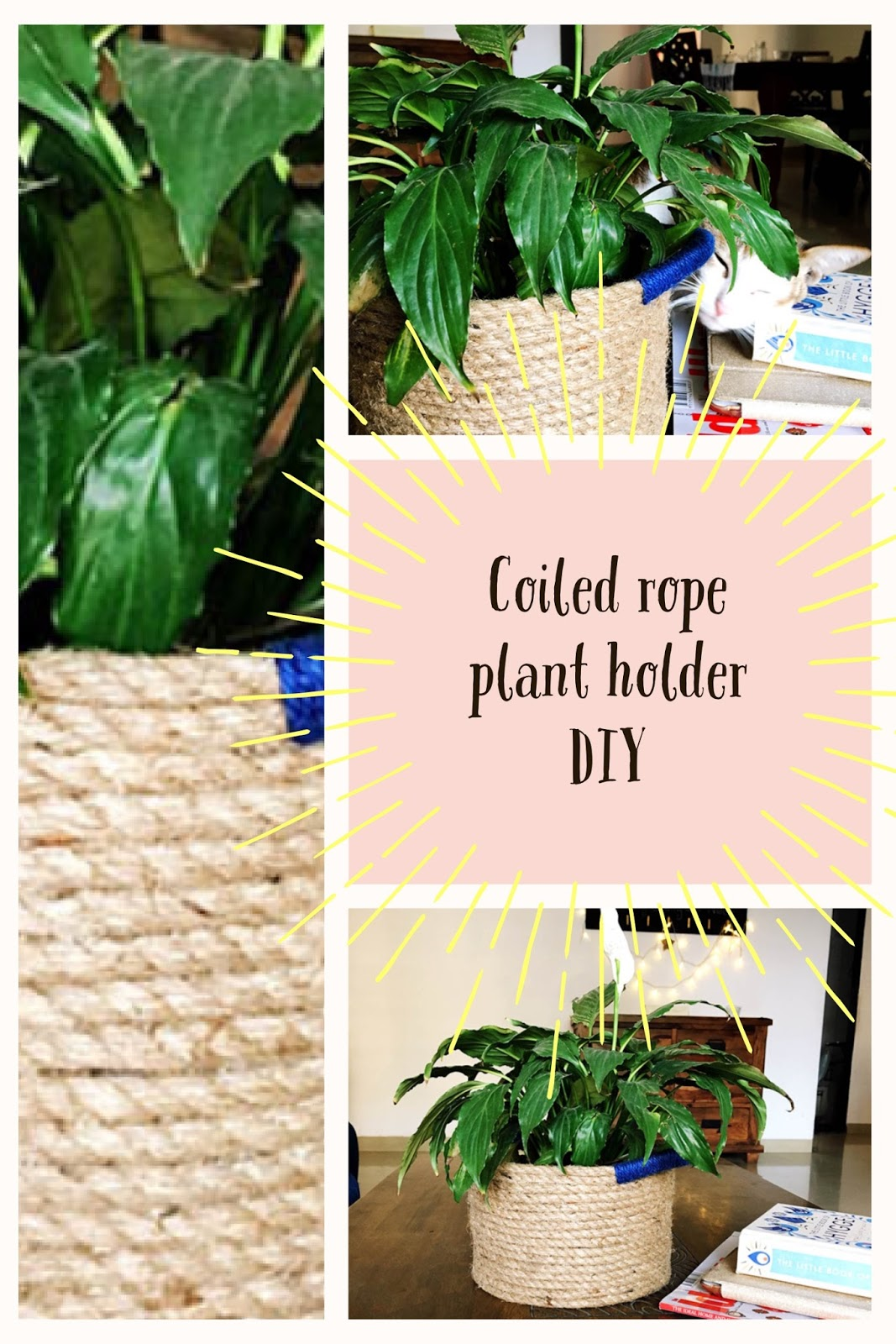 A quick rope basket DIY, no-sew project.