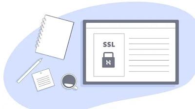 secure wordpress websites