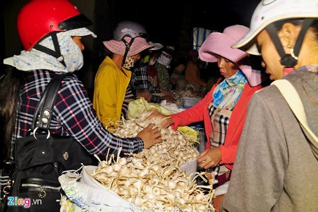 Chợ tỏi 4h sáng trên đảo Lý Sơn - Hình 3