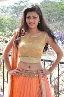 Actress Pallavi Naidu Stills in Half Saree at Lord Shiva Creations New Movie Launch 0006.jpg