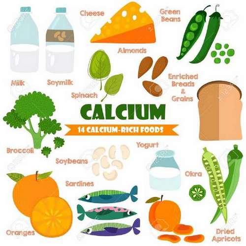Bienfaits du calcium : ostéoporose, contraction cardiaque...