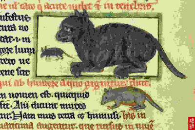 medieval manuscripts, cat, illuminated manuscript, deydras, dydras, powderham, edward ii