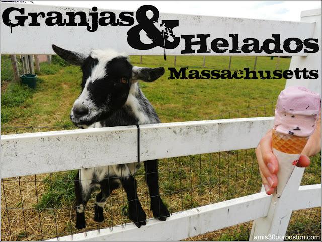 Granjas de Helados en Massachusetts