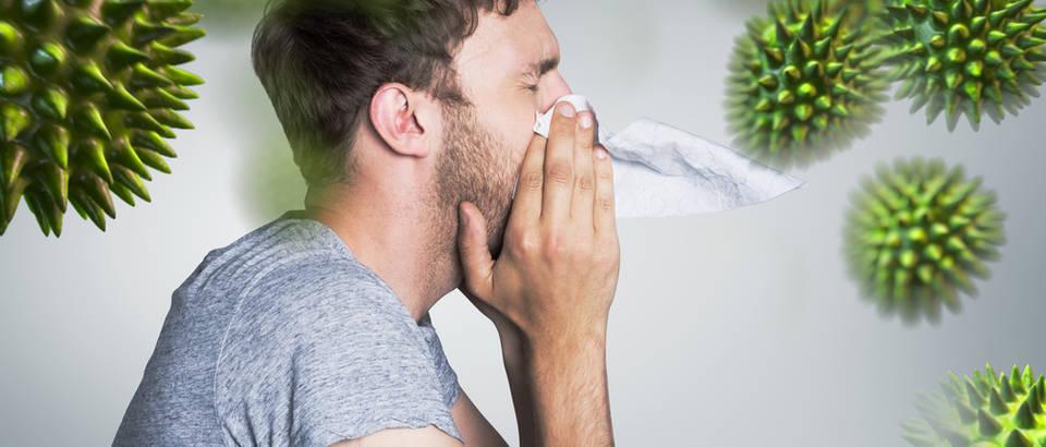 imunitet-hrana-lijek_iz_prirode-prirodno_jačanje_imuniteta-organizam