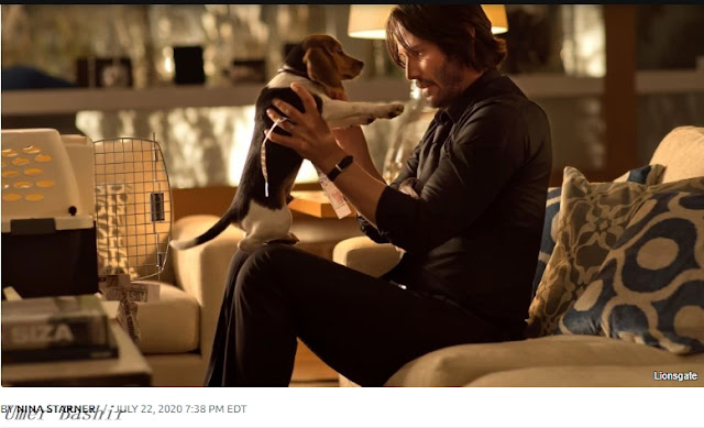 What happened to the puppy from John Wick?