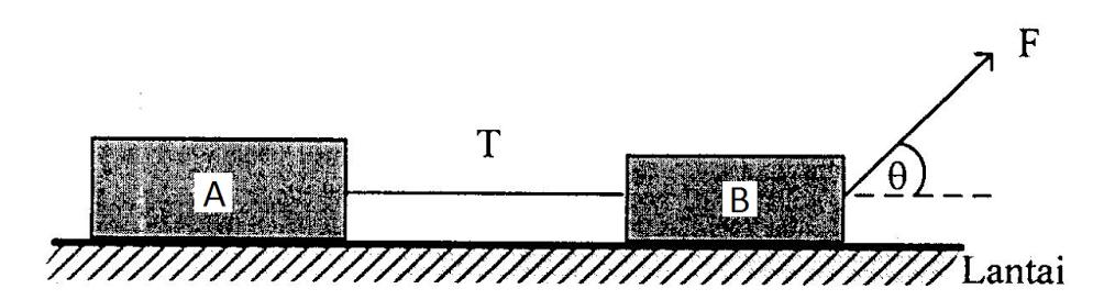 Dua Buah Balok Dihubungkan Dengan Seutas Tali   Seputar Buah