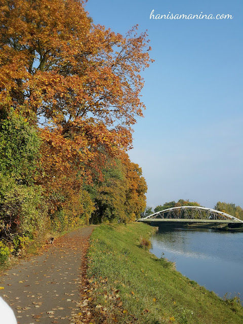image for Hradec Kralove Autumn