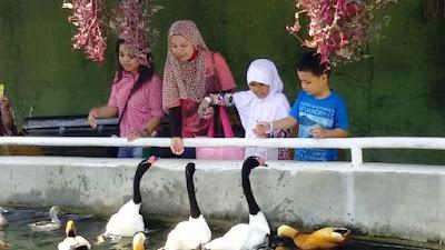 wisata indonesia keluarga ke batu secret zoo dan eco green park jatim malang nurul sufitri mom lifestyle blogger