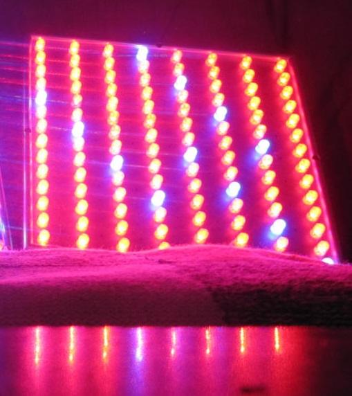 LED Pflanzenlampe 45 Watt mit Rotlicht Konfiguration