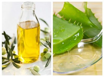 Cách trị nám da bằng nha đam và dầu oliu