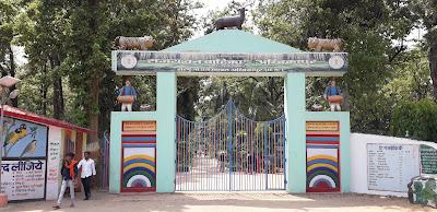 Yoga Center in Ambikapur