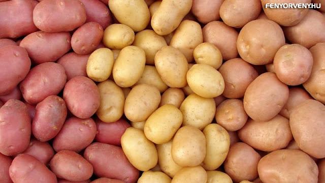 A krumpli, mint gyógyszer