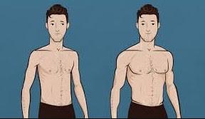 Tips Fitnes Untuk Orang Kurus | Ectomorph