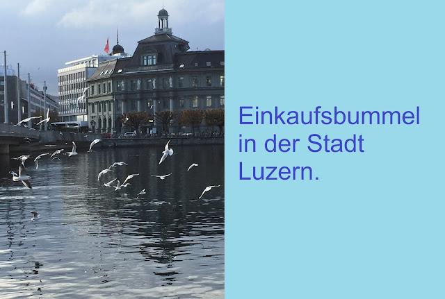 Möwen in der Stadt Luzern