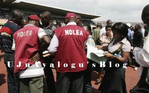 NDLEA arrests 2 suspected drug traffickers at Abuja airport