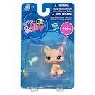 Littlest Pet Shop Singles Cat Shorthair (#1402) Pet