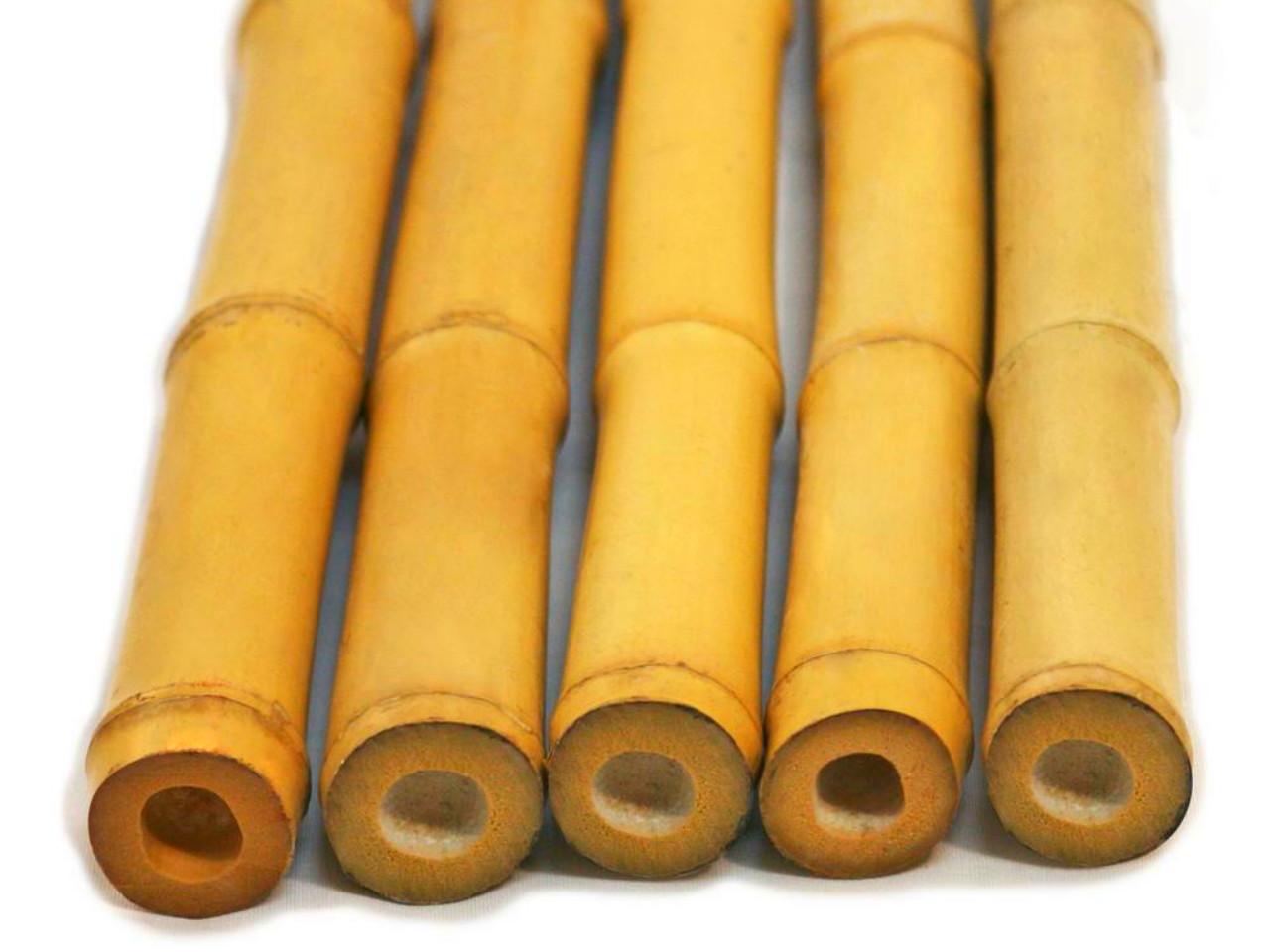 cara-pengawetan-bambu.jpg