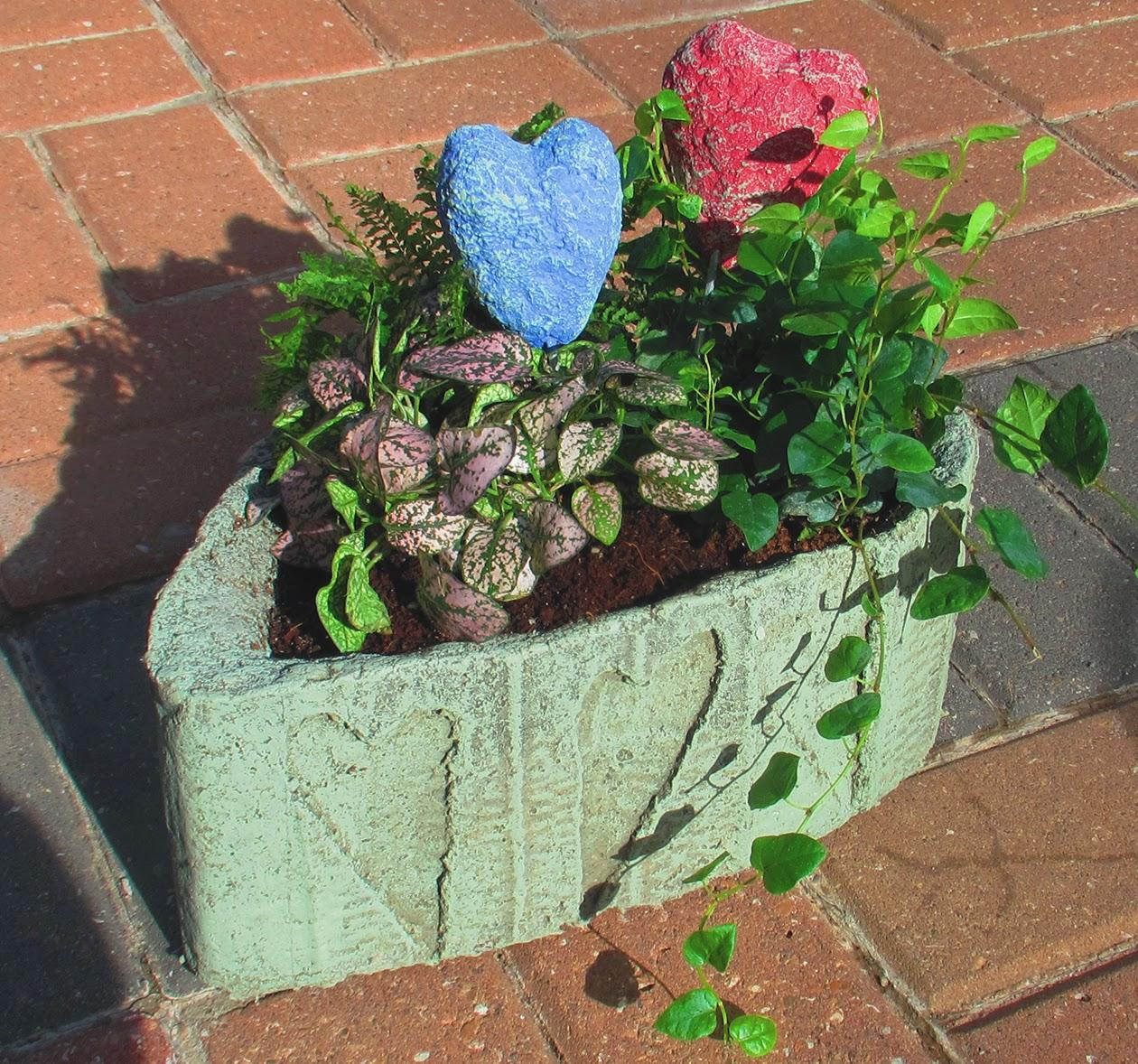Vegetable Garden Styrofoam Box