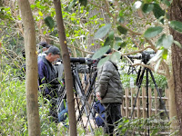 Patient bird photographers at the Kyoto Gyoen National Garden, Japan