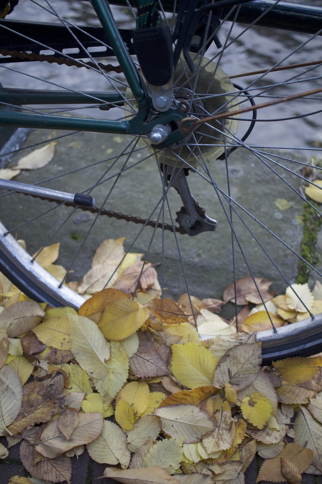Pyöräily Amsterdamissa