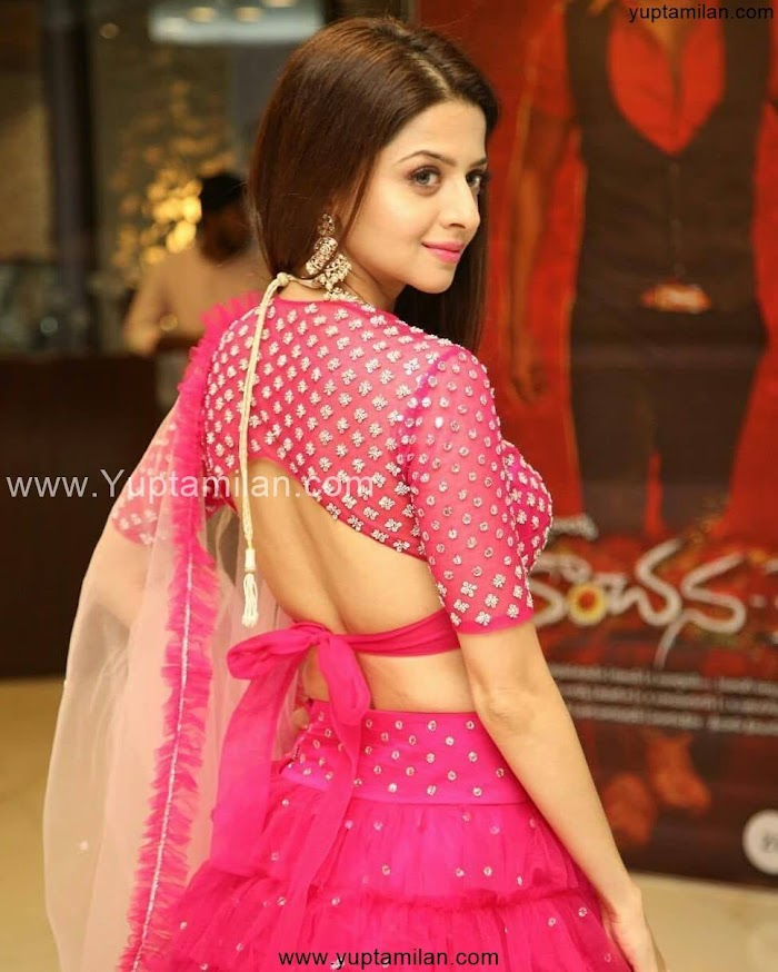 Vedhika Hot & Sexy Photos-Latest Stills|Pictures