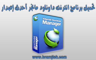 Download IDM 6.29 Build 2