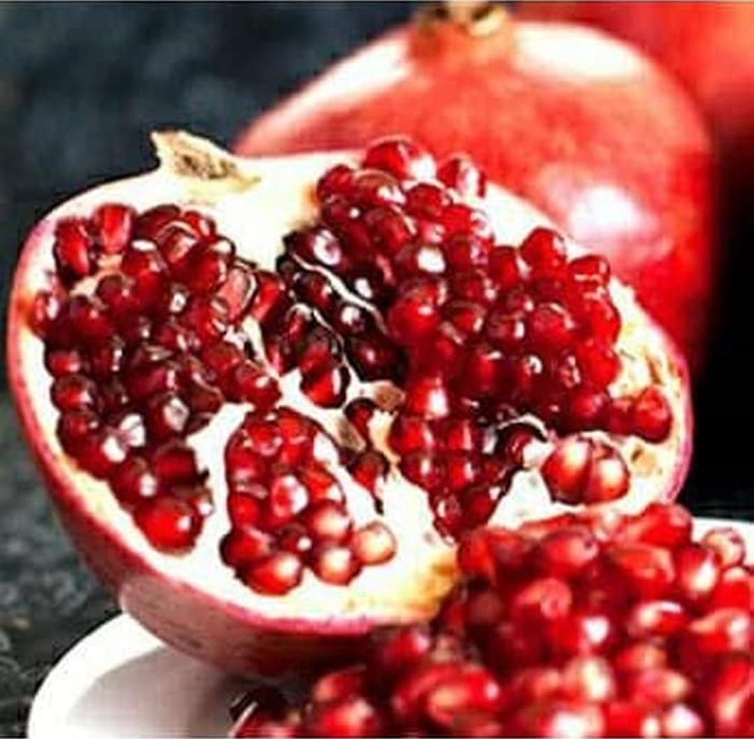Harga Hemat! Bibit buah delima merah biji lunak red ruby pomegranate spanyol Kota Bandung #bibit buah langka