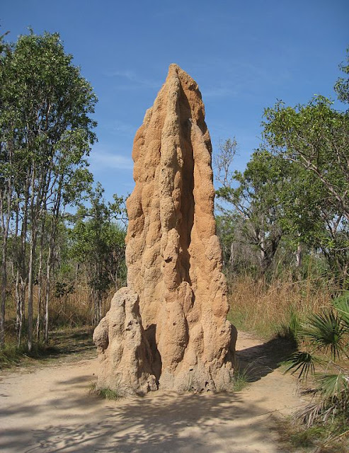 Monster Monday: Termite Mound Guardian, a Swarm-Filled Construct