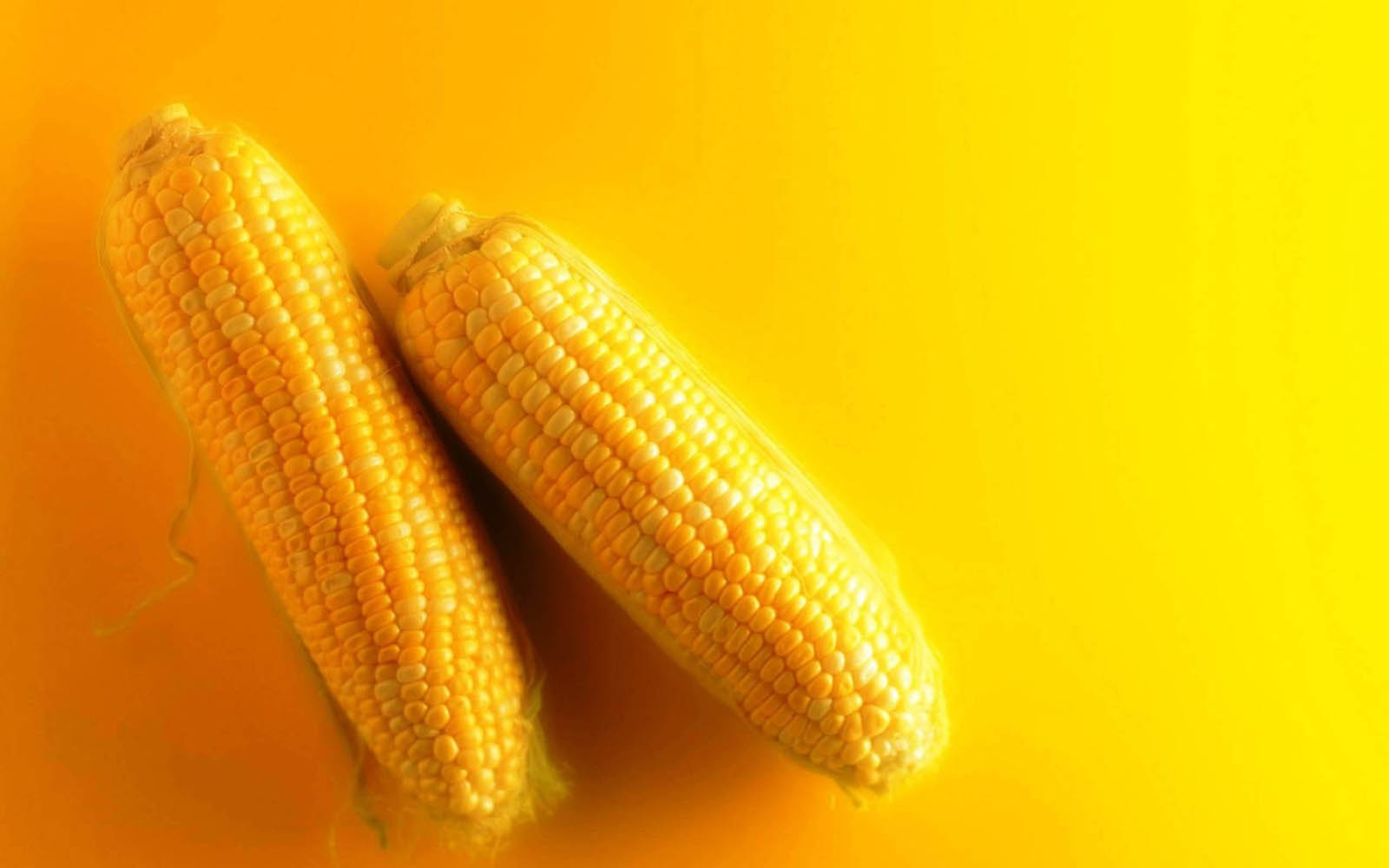 wallpapers: Fresh Corn