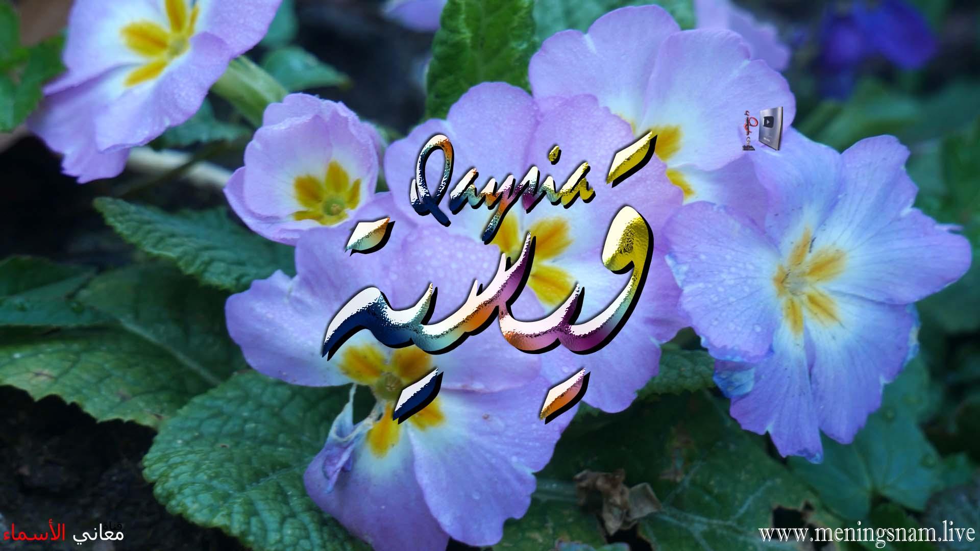 معنى اسم قيسية وصفات حاملة هذا الاسم Qaysia