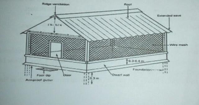 """alt = """"poultry house design"""""""