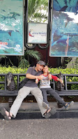 SEA-WORLD-ANCOL