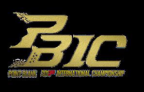 pbic 2013 logo