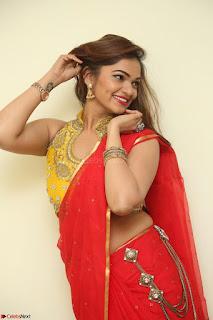 Actress Ashwini in Golden choli Red saree Spicy Pics ~  041.JPG