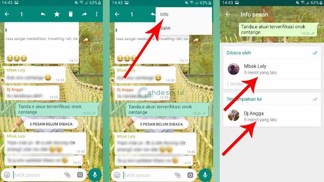 Gambar 2 Cara Mengetahui Chat WA Dibaca