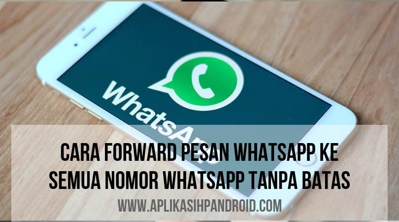 Cara agar forward pesan Whatsapp ke banyak nomor tanpa batas