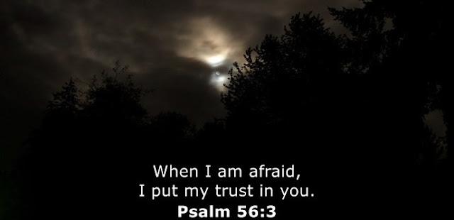 When I am afraid, I put my trust in you.