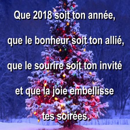 """Résultat de recherche d'images pour """"image joyeux noel et bonne année 2018"""""""