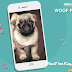 Woof Fest Dogfie Contest