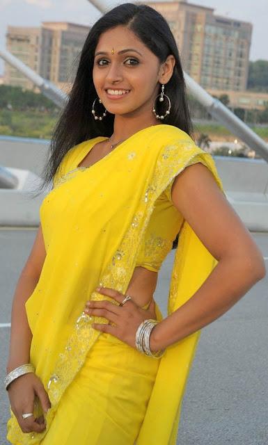 Telugu Actres Hema Latest Stills In Saree Actress Trend