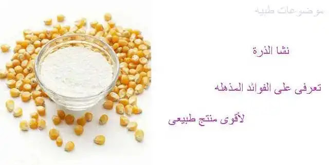 نشا الذرة- نشأ الذرة- نشاء الذرة - فوائد نشا الذرة- ما هو نشا الذرة - طريقة عمل نشا الذرة