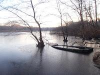 Barque sur un étang brumeux