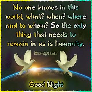 Good night quote English