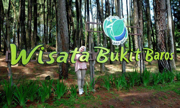 Bukit Baros, Menikmati Keindahan & Kesejukan Hutan Pinus di Sukabumi