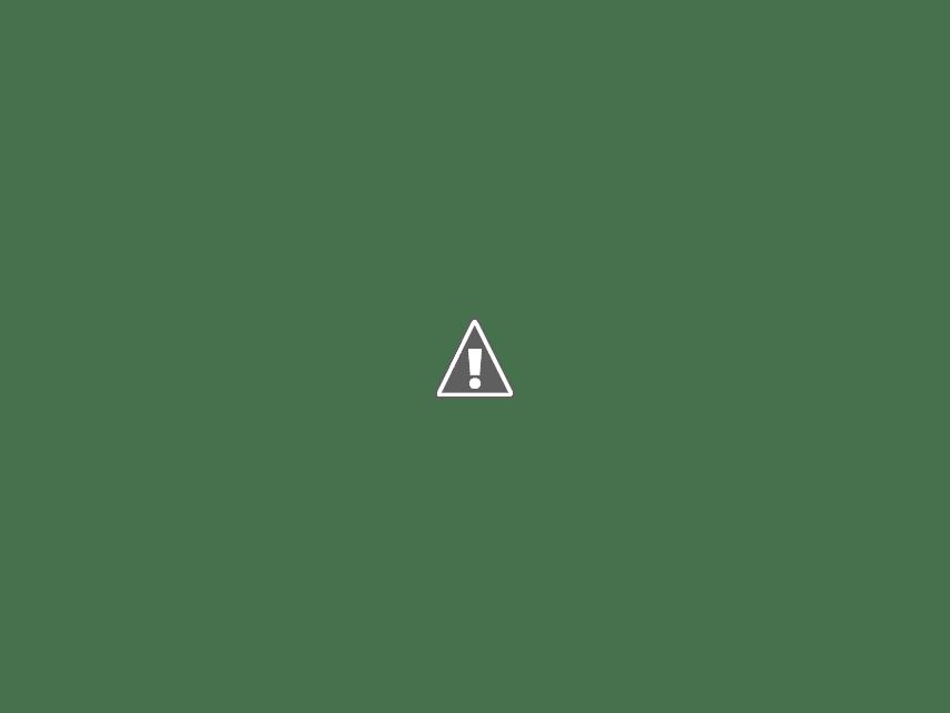 GPS Tracker Review: GT06 Mini GPS Vehicle Tracker - Black