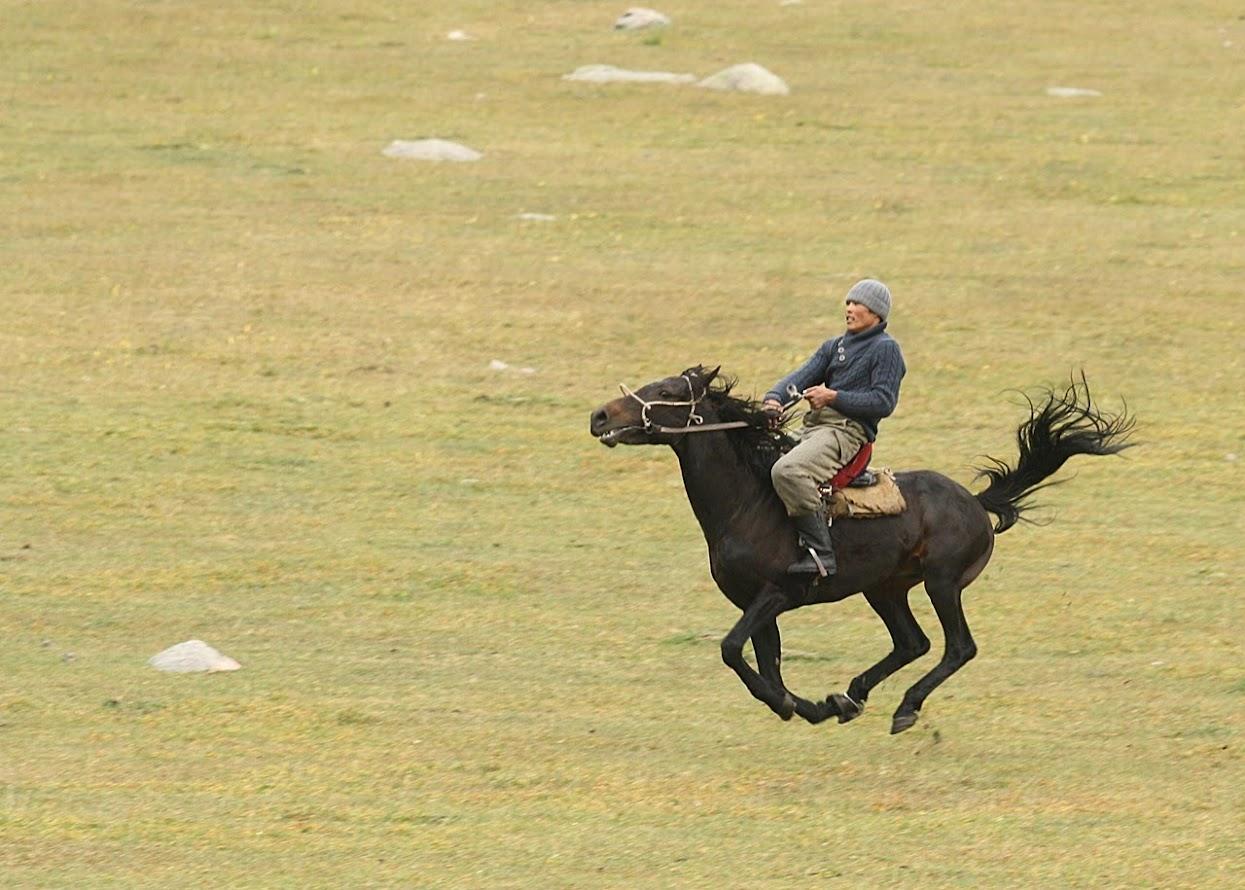 Uluk Tartysz Kirgistan gra konie