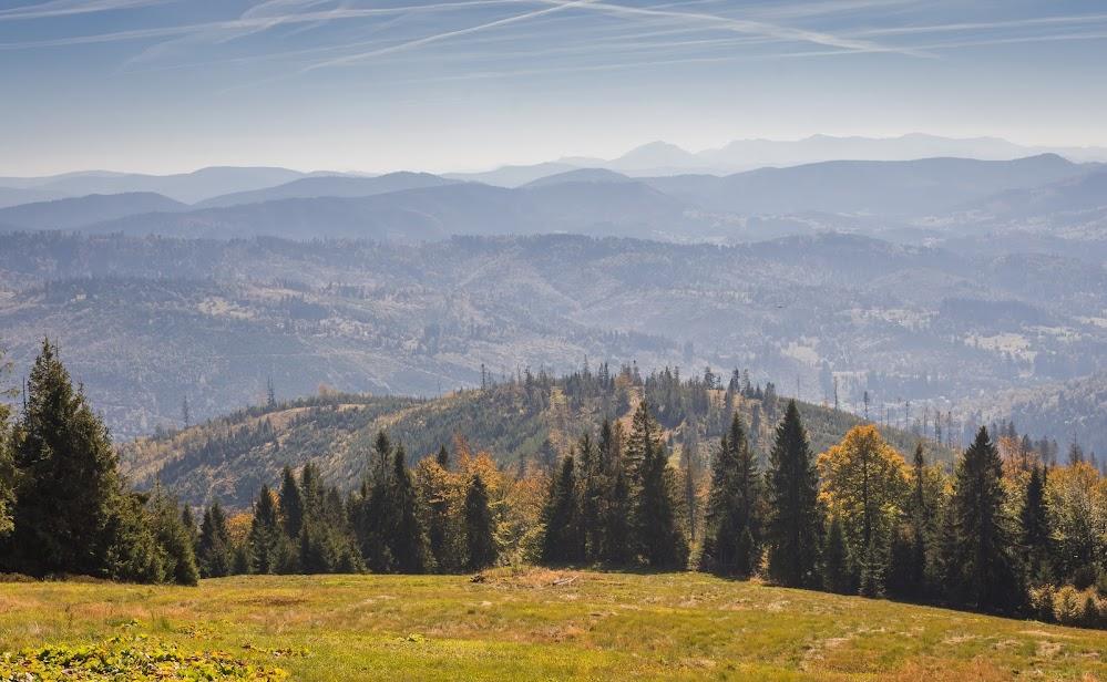 Szlakiem najpiękniejszych beskidzkich hal - Żabnica - Boracza - Lipowska - Rysianka - Pawlusia - Żabnica