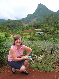 Plantaciones de piña, Isla de Moorea, Polinesia Francesa, vuelta al mundo, round the world, La vuelta al mundo de Asun y Ricardo
