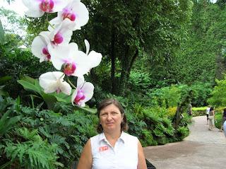 National orchard garden, jardin nacional de las orquídeas,jardin botánico, singapur, singapore, vuelta al mundo, round the world, información viajes, consejos, fotos, guía, diario, excursiones