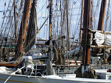 Masts & Lots of Rigging